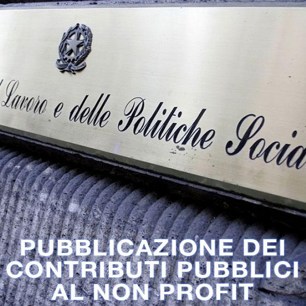 Pubblicazione dei contributi pubblici al non profit